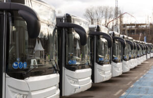Mass Transient Buses